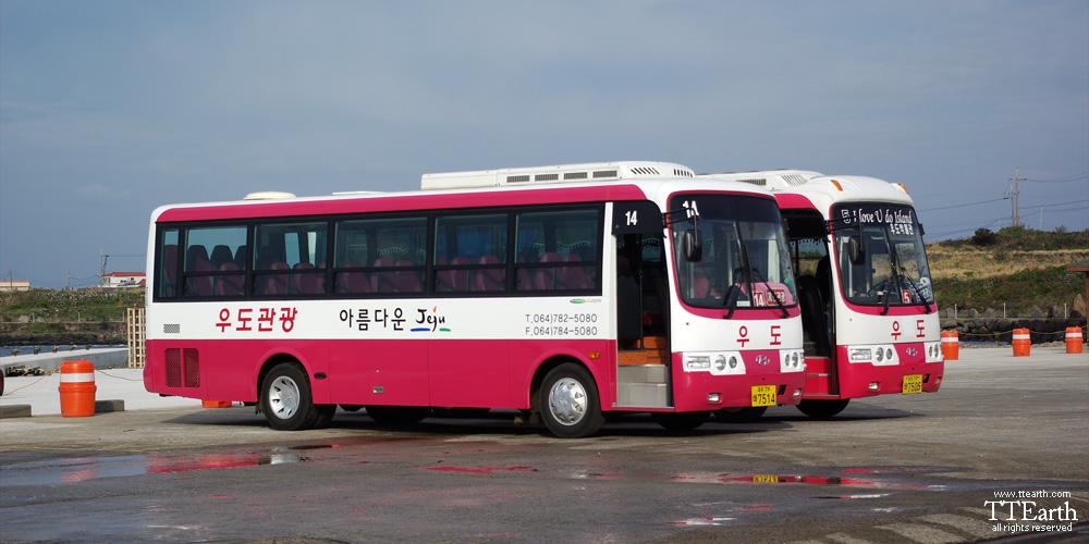 Jeju Tour Bus